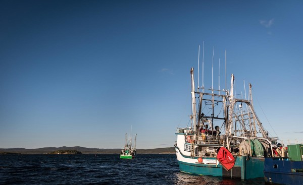 labrador ndc fisheries boat leaving harbour
