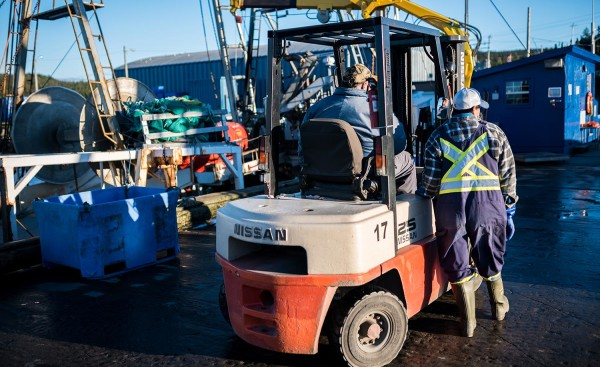 labrador ndc fisheries workers forklift
