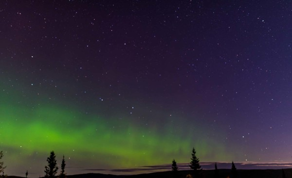 Labrador Scenery Northern Lights